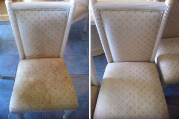 Our Upholstery Cleaning Service Includes: